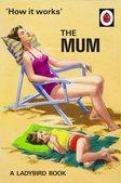 How it Works The Mum A Ladybird Book