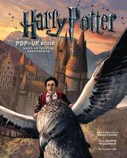 Harry Potter A Pop-Up Book Based on the Film Phenomenon